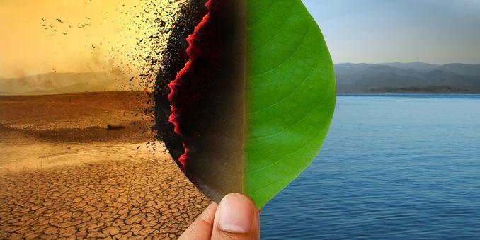 imagen cambio climatico