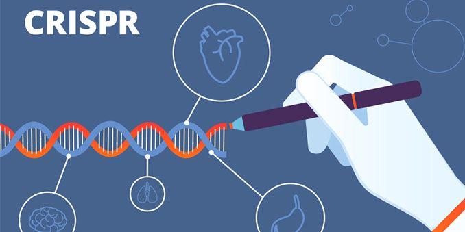 Edición genética con CRISPR y estudios de serovigilancia, nuevos informes del Grupo ISCIII de Análisis sobre Coronavirus